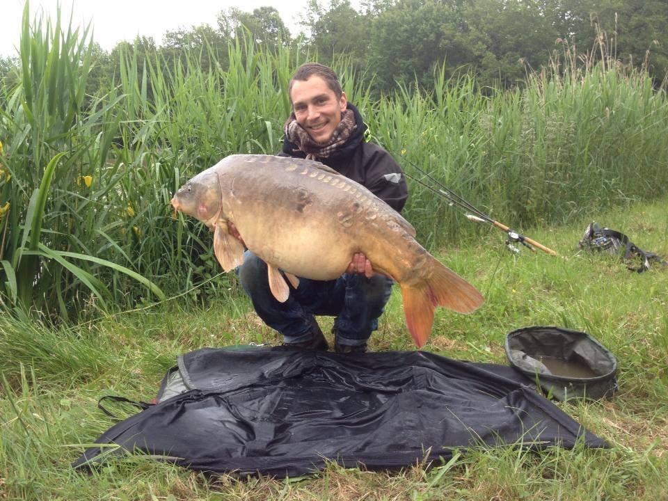 Majestic Carp - Carp Fishing in France
