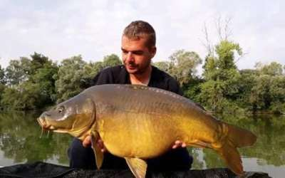 Carp Champagne Catch Report