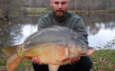 Ecaille Lake : New carp