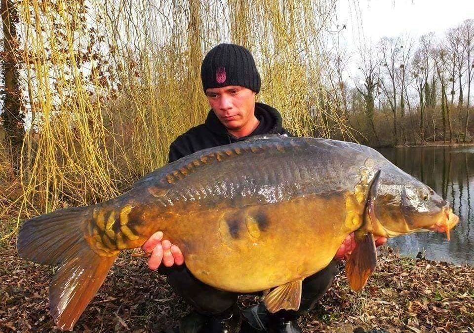 You'll find carp like no others in this lake