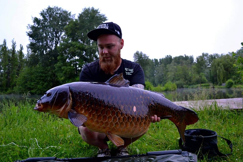 Rather than spend time looking for best black friday deals, look for Black Carp like these