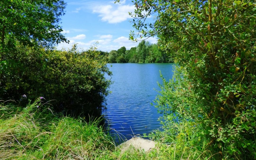 The forgotten lake : Cheshire Lake