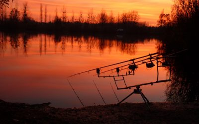 Your Dream Carp is waiting for you here ->