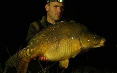 These 100 carp have not yet seen anglers