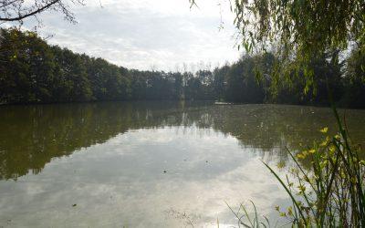 This is a rare jewel among angling lakes !