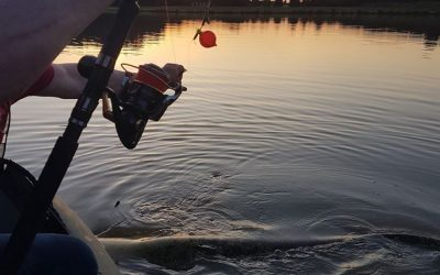 Short session on Rotier and a broken rod … breathtaking fish !